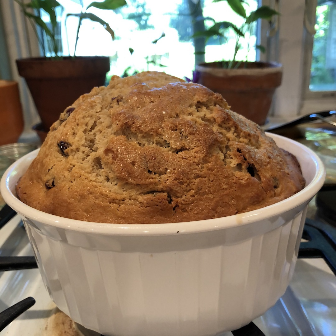 Irish Soda Bread in a white pan in front of a window with plants