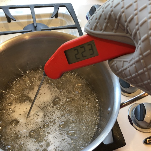 checking temperature with silicone oven mitts and instant read thermometer
